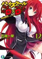 Light novel (tom 12) okładka.jpg