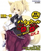 High School DxD DX.2 (w. lim.) okładka.jpg
